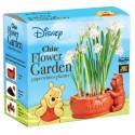 Pooh Chia Flower Garden
