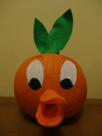 Orange Bird Adventureland Pumpkin