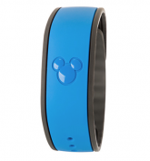 "Jason Hope and Motley Fool Report: ""Internet of Things Has Reached Magical Disney World"" in 2 years Magic Bands have over 10 Million Distributed"