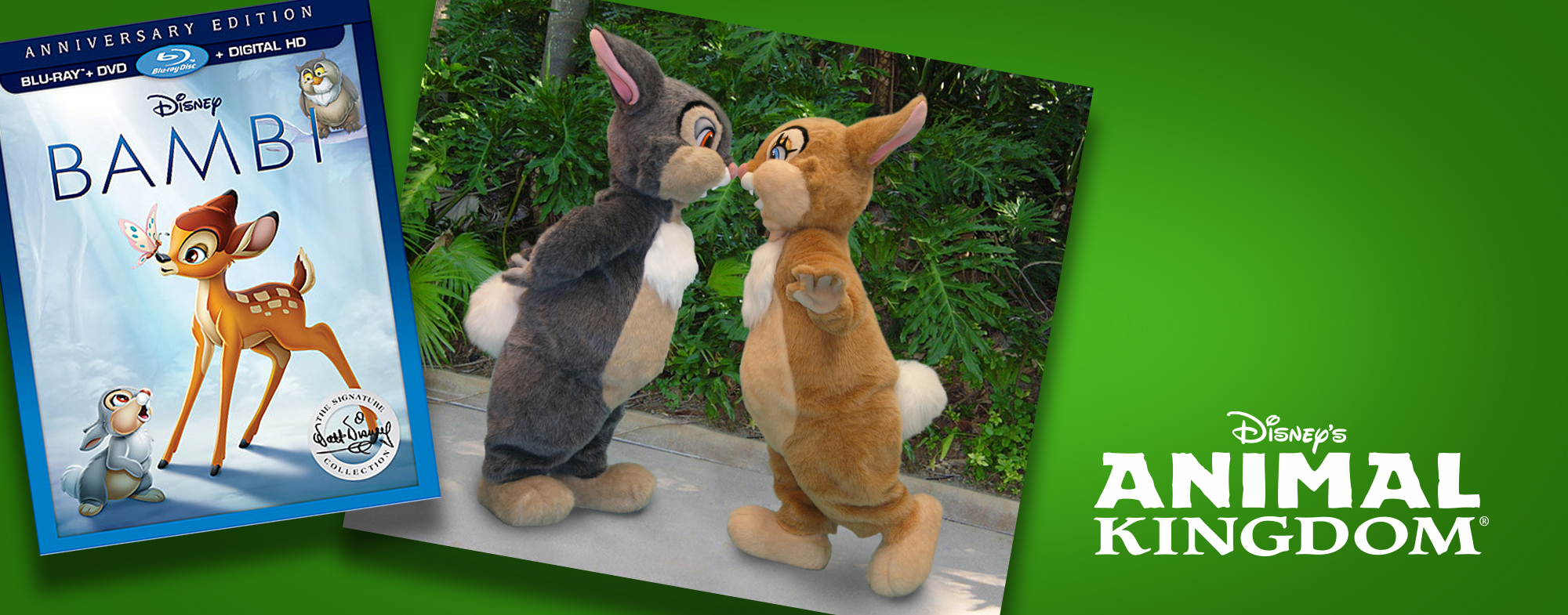 75th Anniversary of 'Bambi' Brings a Special Meet & Greet to the Parks and PhotoPass Exclusives!