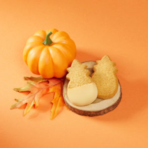 Premium Pumpkin shortbread cookies from Honolulu Cookie Company.
